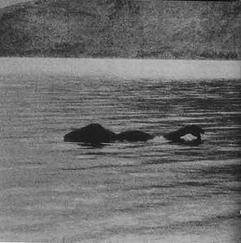 The loch ness monster [ wikipedia ]
