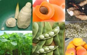 Sayuran dan Buah yang mengandung Sianida